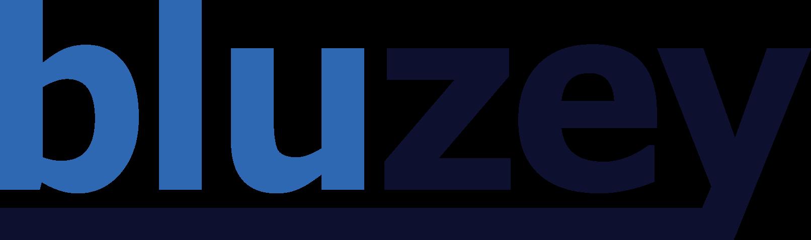 Bluzey Guitars